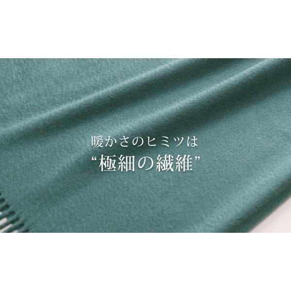 カシミヤストール 100% 大判 サイズ フリンジ付き レディース 内モンゴル産 厚手 全19色|j-white|09