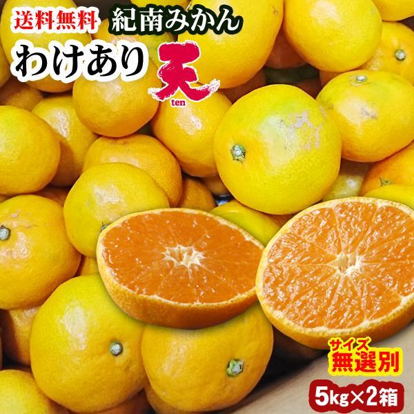 送料無料 わけあり「天」みかん サイズ混合 5kg×2箱 合計10kg 〜和歌山県紀南地方の甘いみかん キズあり 訳あり 無選別 糖度設定11度 早生みかん