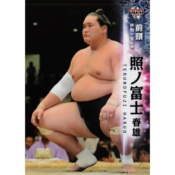 照 ノ 富士 春雄