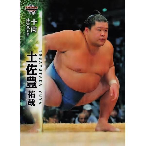 BBM 大相撲カード 2015 レギュラー 51 土佐豊 祐哉 :15SUMO-51 ...