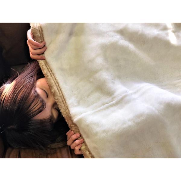 大特価セール 毛布 日本製 吸湿発熱 蒸れにくくて抗菌防臭 メーカー直販 シングル 少し大き目サイズ japan-blanket 09