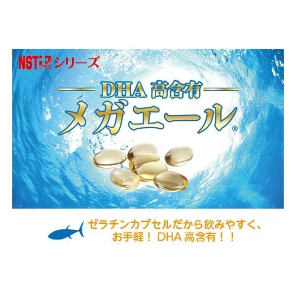 楠式高濃度DHA「メガエール」|japanicarellc