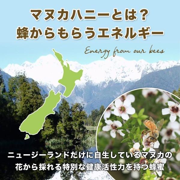 プレミアム マヌカハニー UMF10+ 500g ニュージーランド産 はちみつ 蜂蜜 honey 送料無料|jarrah|03