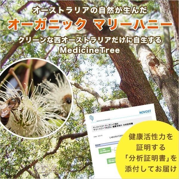 マリーハニー TA 20+ 250g×4本セット 1kg マヌカハニーと同様の健康活性力 オーストラリア・オーガニック認定 はちみつ 蜂蜜 送料無料|jarrah|03