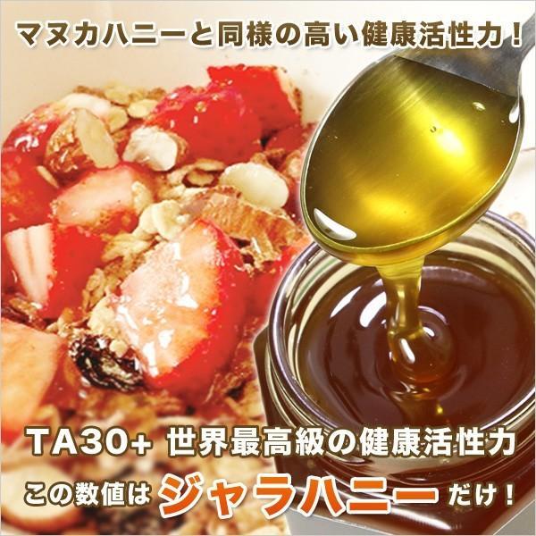 ジャラハニー TA 30+ 250g マヌカハニーと同様の健康活性力 オーストラリア・オーガニック認定 はちみつ 蜂蜜 honey 送料無料|jarrah|02