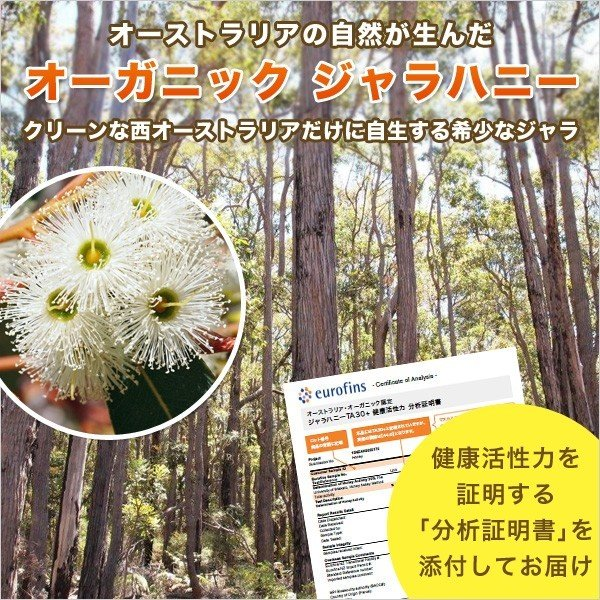 ジャラハニー TA 30+ 250g マヌカハニーと同様の健康活性力 オーストラリア・オーガニック認定 はちみつ 蜂蜜 honey 送料無料|jarrah|03