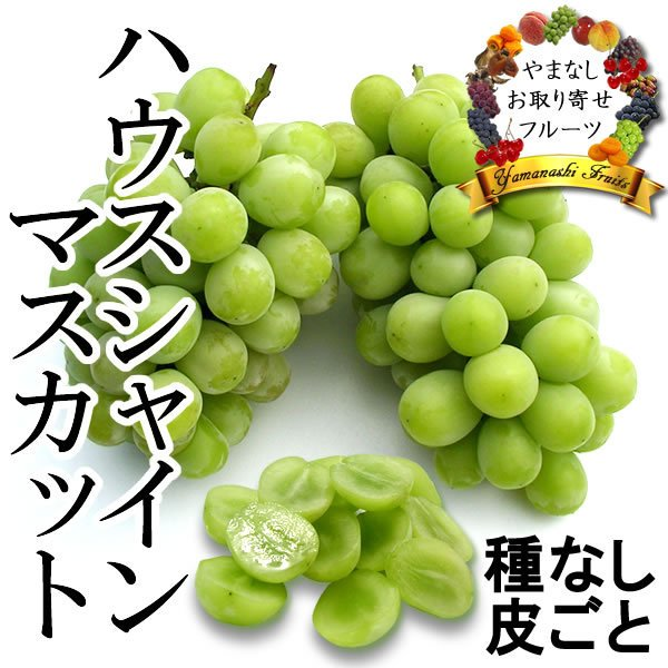 お中元 御中元 ギフト フルーツ ぶどう 葡萄 ブドウ ハウス シャインマスカット|jerichojericho