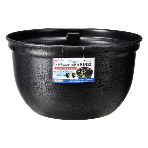 ジェックス/メダカ元気メダカのための飼育鉢黒370