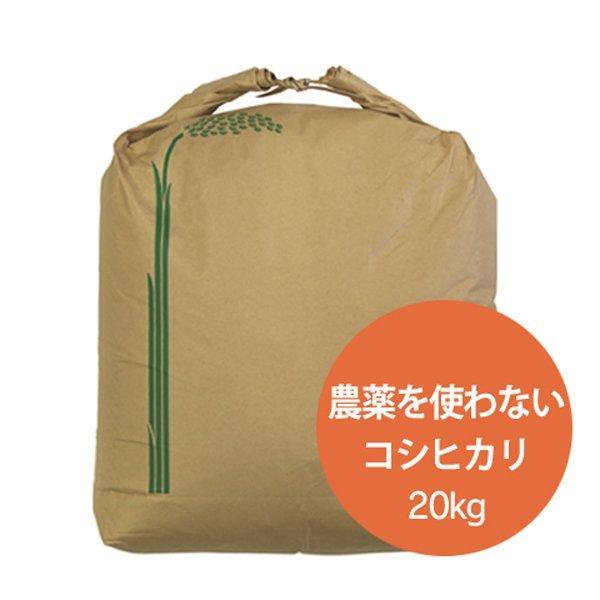 ハロウィン R2年在庫無_石川県産 2021年産 新米 特別栽培米 農薬を使わないこしひかり 玄米20kg 産地直送 送料無料 無農薬 コシヒカリ