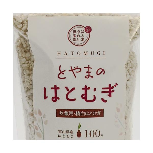 JAいなば 富山県産ハトムギ精白粒 小粒 500g 3袋セット 産地直送|jibamon|02