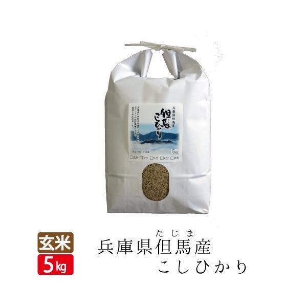 新米令和2年産玄米5kg天空の城竹田城コウノトリで有名な西日本兵庫県但馬産コシヒカリ食味 特A米玄米カイロ最適