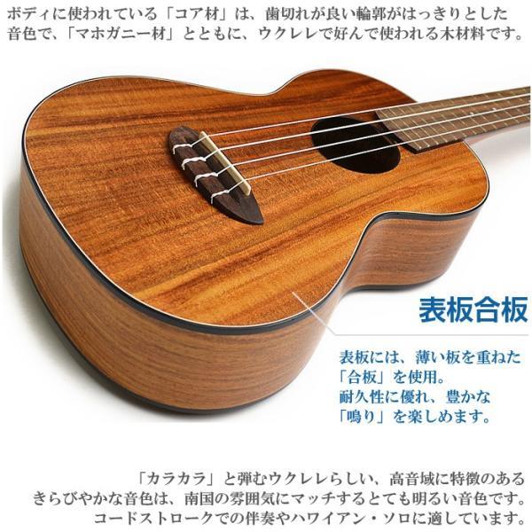 ウクレレ 初心者 アクセサリーセット アヌエヌエ Aqua-CK3 (aNueNue テナーサイズ)|jivemusic|03