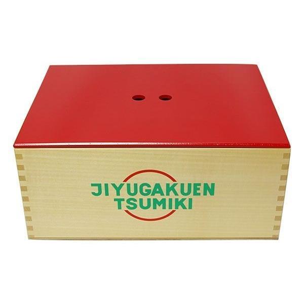 知育積み木【コルクつみき ラージ】木箱入り 男の子 女の子 お誕生日 出産祝|jiyu|10