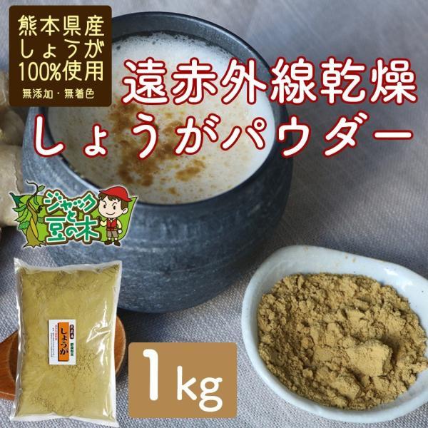 業務用 遠赤乾燥生姜粉末 1kg 無添加 無着色 熊本産 国産