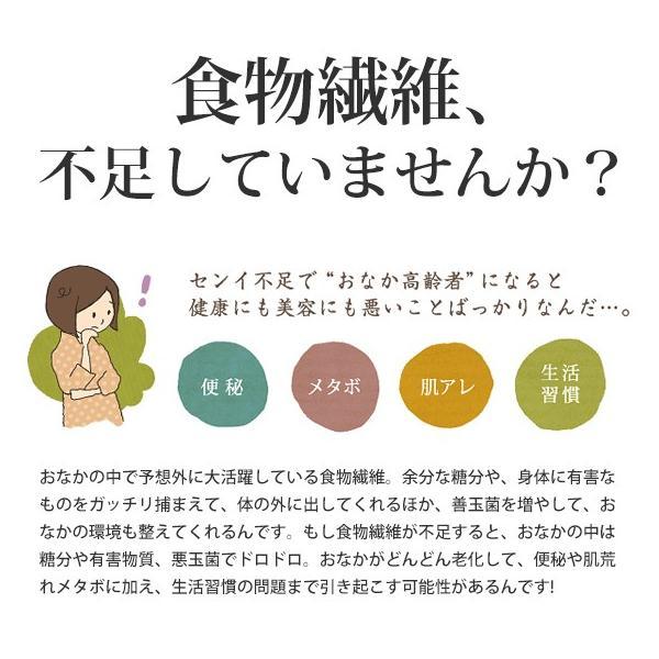 さとうきびごはんの素 2g×30包入×1袋 さとうきびから生まれた新しい食物繊維食品【送料無料】 jonetsukokuto 02