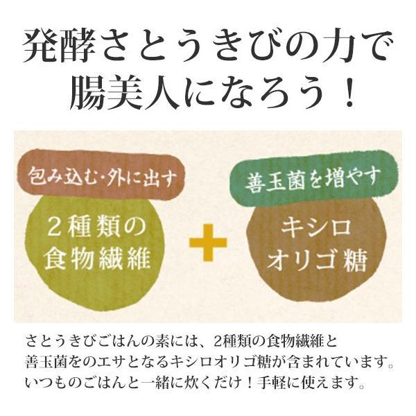 さとうきびごはんの素 2g×30包入×1袋 さとうきびから生まれた新しい食物繊維食品【送料無料】 jonetsukokuto 03