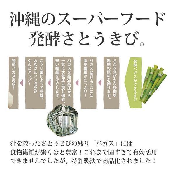 さとうきびごはんの素 2g×30包入×1袋 さとうきびから生まれた新しい食物繊維食品【送料無料】 jonetsukokuto 04