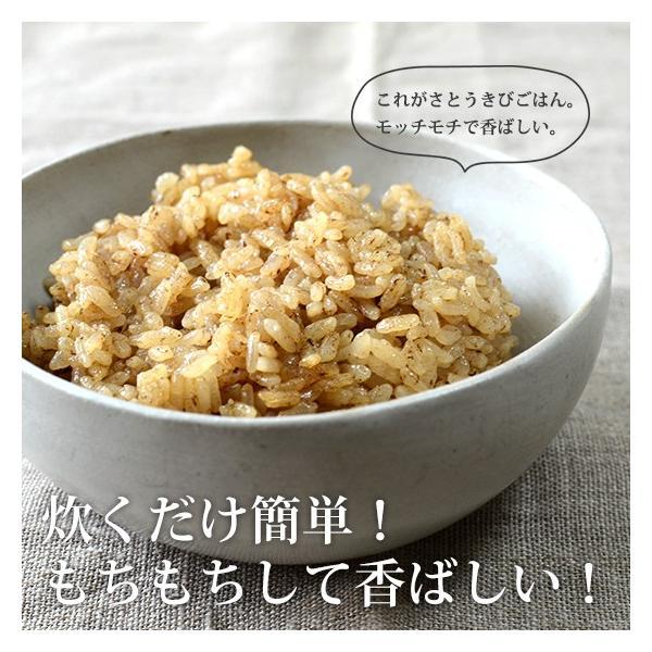 さとうきびごはんの素 2g×30包入×1袋 さとうきびから生まれた新しい食物繊維食品【送料無料】 jonetsukokuto 05