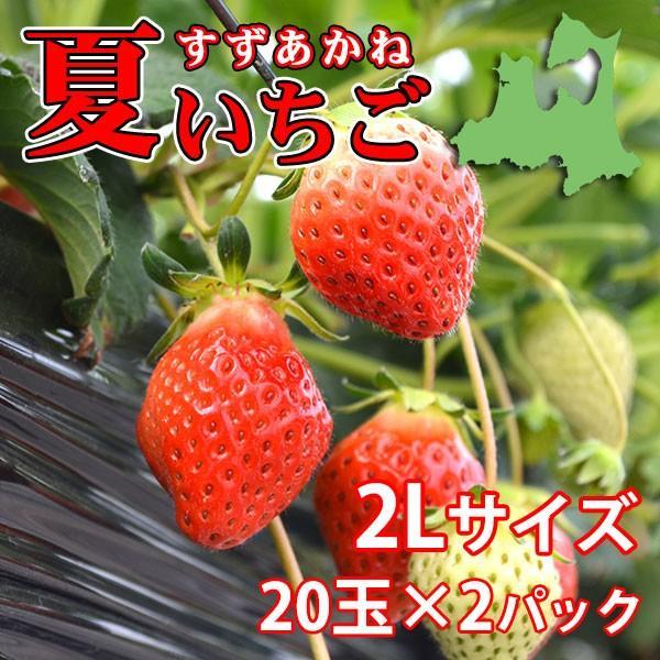予約販売 夏秋いちご すずあかね(2Lサイズ)20玉×2合計40玉(送料別)