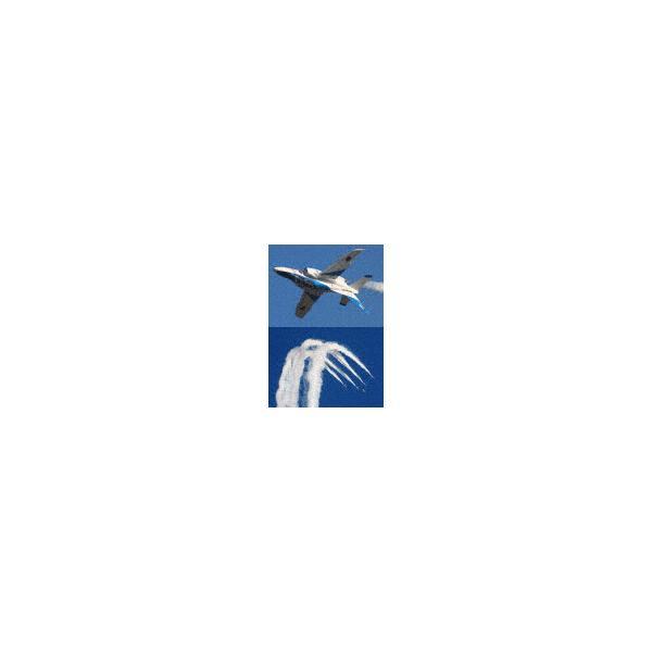 ブルーインパルス・曲技飛行 Vol.5/飛行機[DVD]【返品種別A】