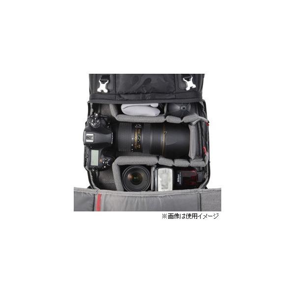ハクバ カメラバッグ バックパック ライト L(ブラック) GW-PRO RED SGWPR-2RBPL 返品種別A