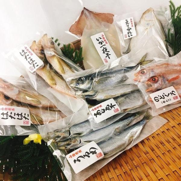 送料無料 干物セット ギフト 鳥取県境港産 こだわりの贅沢干物 丸干し6種セット  のどぐろ アジ カレイ ハタハタ ウルメ スルメいか 冷凍配送