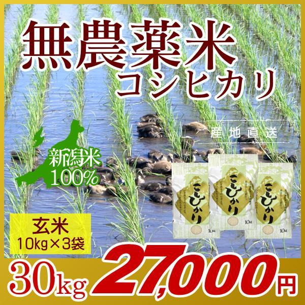 無農薬米 コシヒカリ 玄米 30kg(10kg×3袋)/アイガモ米 自然栽培米 新潟米