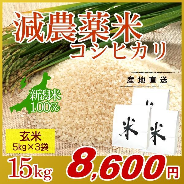 お米 15kg(5kg×3袋) 玄米 コシヒカリ 新潟県産 減農薬米 岩船産 こしひかり 令和2年産