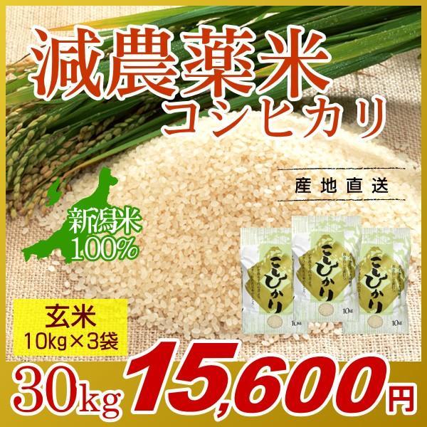 お米 30kg(10kg×3袋) 玄米 コシヒカリ 新潟県産 減農薬米 岩船産 こしひかり 令和2年産