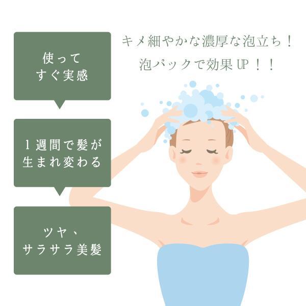 髪と頭皮の美容液シャンプー 250ml ナノコシャンプー トリートメントレス 高濃度溶解炭酸 シャンプー nanoco shampoo エコサート オーガニック認証団体|joyfulgame|03