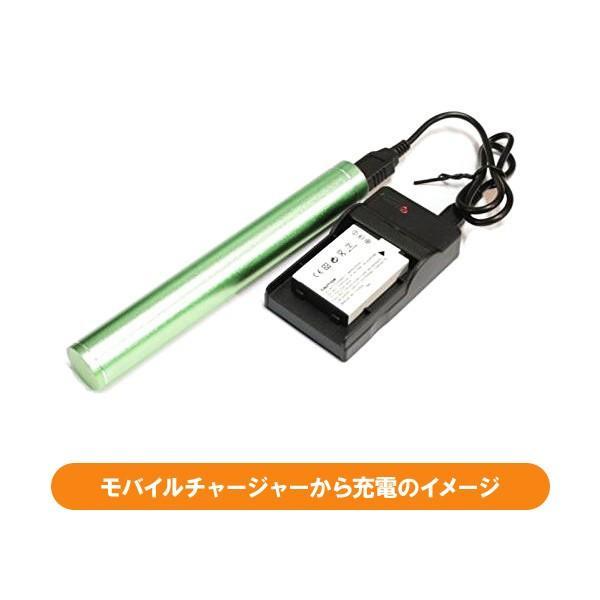 定形外 DC83 USB型充電器BC-81L+カシオNP-80互換バッテリー2個の3点セット