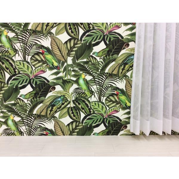 輸入壁紙 rasch2018 439533 南国 ボタニカル アニマル