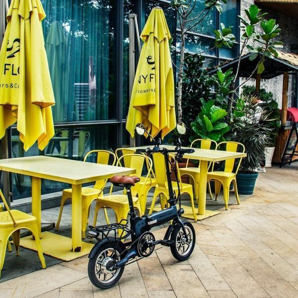 RICHBIT TOP619 SmarteBike  近未来型小型EV 電動自転車 電動バイク 電動スクーター 原付 折り畳み 公道可|jpstars|25