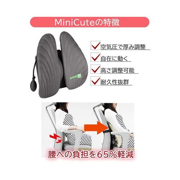 半額 姿勢矯正サポート  MiniCute 椅子 腰痛対策 車 クッション ランバーサポート 車 セール|jpt-teds|02