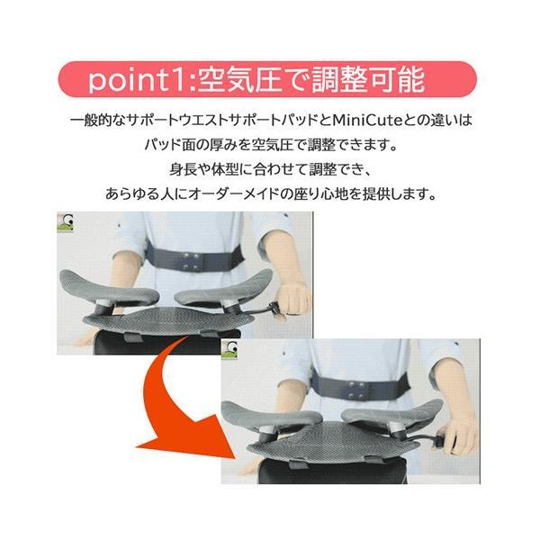 半額 姿勢矯正サポート  MiniCute 椅子 腰痛対策 車 クッション ランバーサポート 車 セール|jpt-teds|03