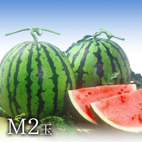 九州 ギフト 2021 すいか 熊本産 M 2玉 ふるさと駅  熊本県産 植木 スイカ 西瓜 果物 常温