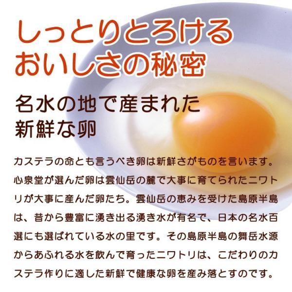 お中元 ギフト 2018 長崎心泉堂  幸せの黄色いカステラ 1号  常温|jrk-shoji|03