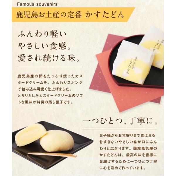 九州 ギフト 2018 薩摩蒸気屋 かすたどん 8個入 鹿児島 お土産 お菓子 和菓子 常温|jrk-shoji|03