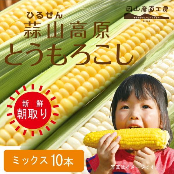 お中元 ギフト とうもろこしミックス10本 蒜山高原トウモロコシ 冷蔵 12-02-26
