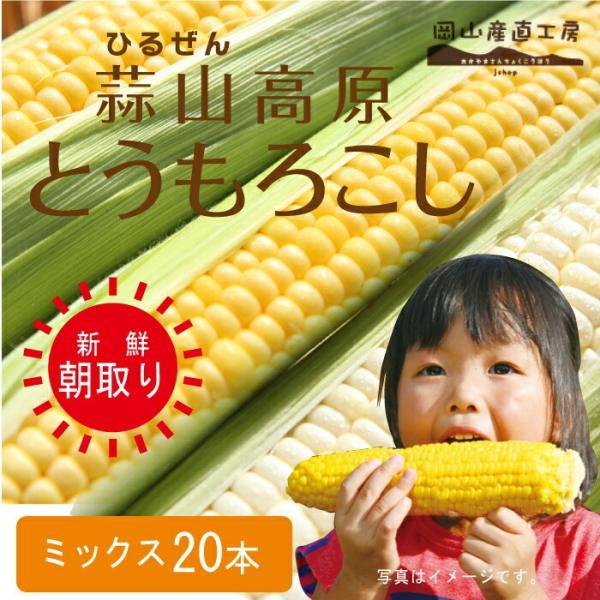 お中元 ギフト とうもろこしミックス20本 蒜山高原トウモロコシ白 黄色 冷蔵 12-03-26