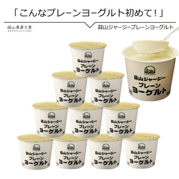 蒜山ジャージーヨーグルトプレーン10個セット 送料無料 ラッピング対応 プレーンヨーグルト 無糖