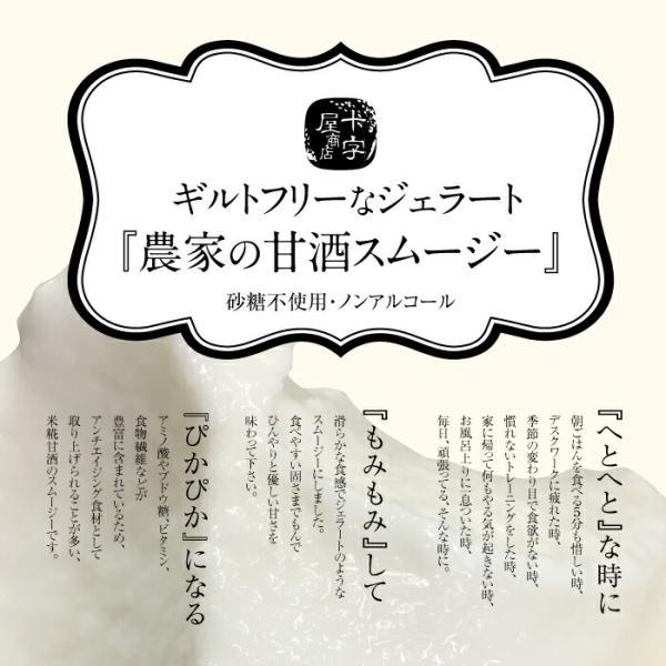農家の甘酒スムージー プレーン120g 5個入り|jshop-web|02