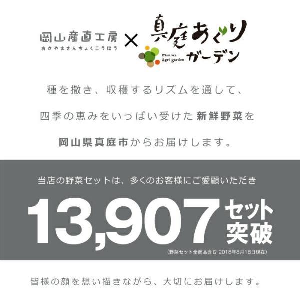野菜セット 岡山産直野菜セット おまかせ7品|jshop-web|02