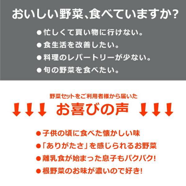 野菜セット 岡山産直野菜セット おまかせ7品|jshop-web|03