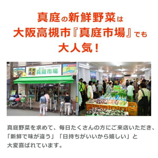 野菜セット 岡山産直野菜セット おまかせ7品|jshop-web|04