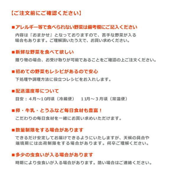 野菜セット 岡山産直野菜セット おまかせ7品|jshop-web|05