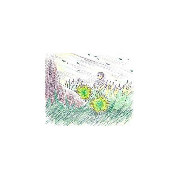 【ダウンロード版】「風の又三郎」 マルチメディアDAISY図書|jsrpd