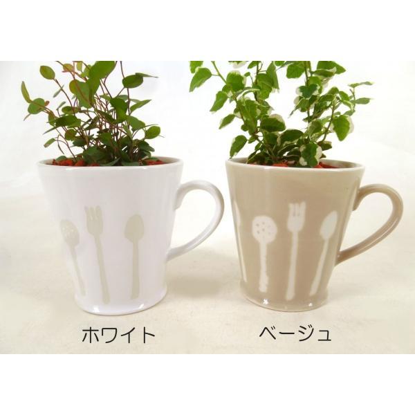 カトラリーカップ セラミス植え 観葉植物/ハイドロカルチャー/水耕栽培/インテリアグリーン|julli|02