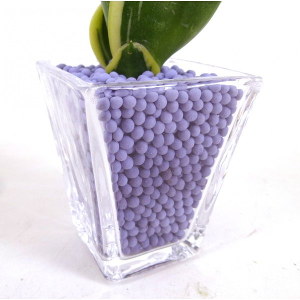 GブロックS スクエア リサコ植え カワラカルチャー 4個セット 観葉植物/ハイドロカルチャー/水耕栽培/インテリアグリーン|julli|04