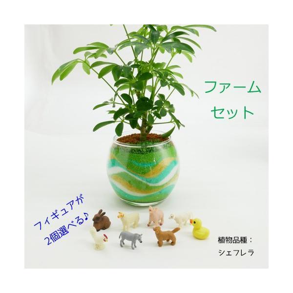 フィギュアが選べる♪ カラーサンド植え 水さし付【ファームセット】 観葉植物 ハイドロカルチャー 水耕栽培 インテリアグリーン
